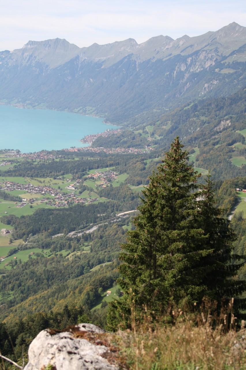 Berghutten Zwitserland - Rothornblickhütte (1400m)
